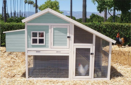 Precision Pet Nantucket Chicken Coop/Rabbit Hutch
