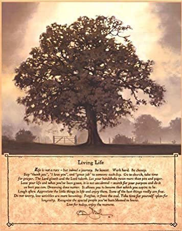 Exceptional Living Life   Poster By Bonnie Mohr (16 X 20)