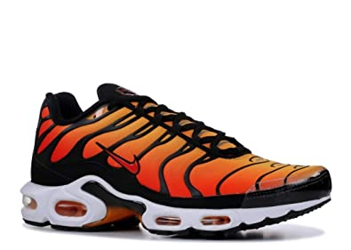 quality design 49d37 24efb Amazon.com | Nike Men's Air Max Plus Mesh Running Shoes ...