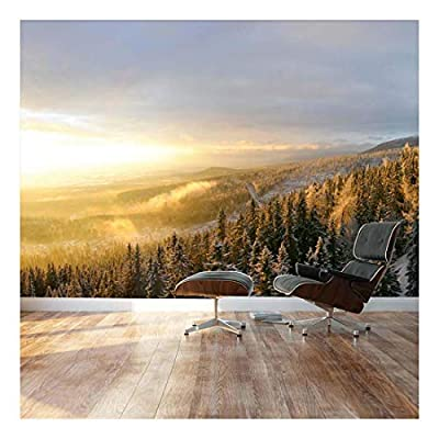 Winter Forest Snow with a Warm Sunset on The Misty air - Landscape - Wall Mural, Removable Sticker, Home Decor - 66x96 inches