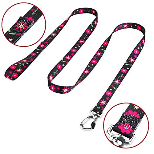 Dazzber Floral Print Durable Dog Leash Strong 6 ft x 1 Sun Flower, Heavy Duty Leashes for Medium to Large Dogs