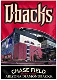 MLB Arizona Diamondbacks Two Sided Stadium View Vertical Banner, 28 x 40-Inch