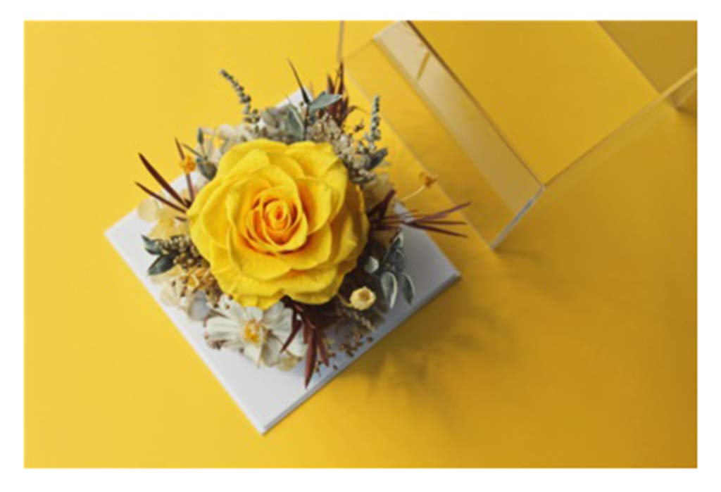 DerFel - 造花永遠の花 永遠の花ローズギフトボックス小さなキュービック透明なボックスの装飾永遠の花 - 8525 (Color : C) B07THXW721 C