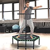 ISE Mini Fitness Trampoline,Ø 122 cm,Indoor Trampoline with Height-adjustable Grab Handle, Endurance Training for Adults & Children, TÜV-Approved, User Weight Up to 120kg,1105-GR