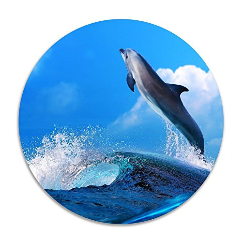 Reteone Animals Waves Happy Mood Dolphin Anti-slip Coral Velvet Round Area Rugs Memory Foam Floor Carpets Mats 15.75 Inch Diameter Bedroom Rug Yoga Chair Mat Doormat (Rugs Ikea Edmonton)