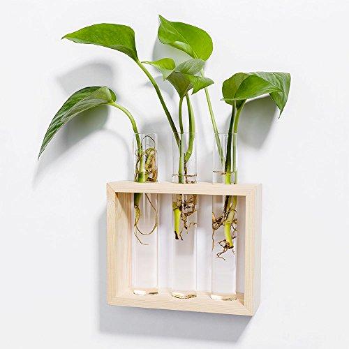 Mkono wall hanging planter test tube flower bud vase with for Test tube flower vase rack