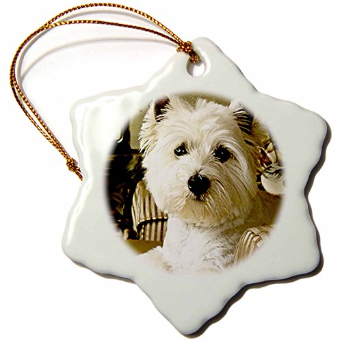 Terrier Dog Christmas Ornament - 3dRose Dogs West Highland Terrier - Westie - 3 inch Snowflake Porcelain Ornament (orn_609_1)