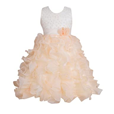 LaoZan Kids Flower Embroidery Sleeveless Princess Party Dress Wedding Bridesmaid Christening Birthday For Girls Apricot