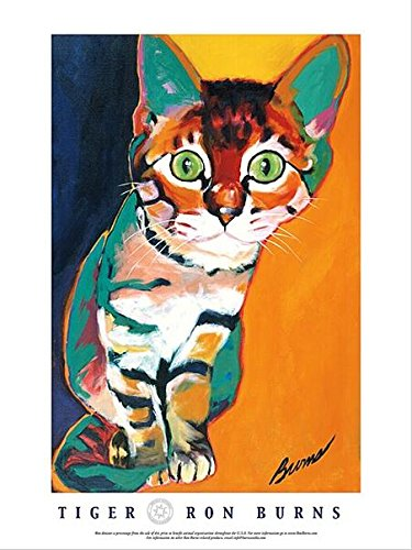 (Buyartforless Tiger by Ron Burns 24x18 Art Print Poster Cat Kitten Cute Colorful)