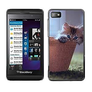 Blackberry Z10 , Radio-Star - Cáscara Funda Case Caso De Plástico (Cute Kitty Cat Basket)