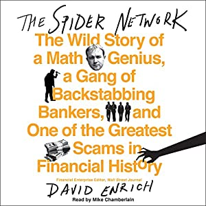 The Spider Network Audiobook