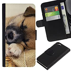 eJoy---La carpeta del tirón la caja de cuero de alta calidad de la PU Caso protector - Apple iPhone 6 - --Tibetan Spaniel Mutt Mongrel Dog