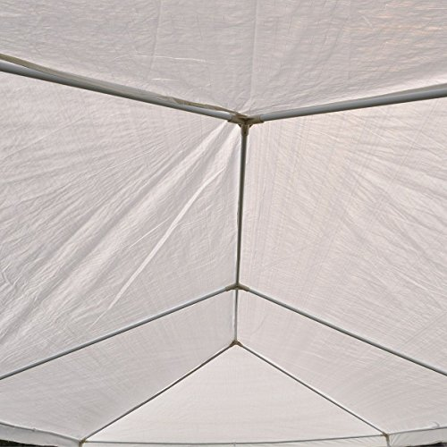 Clevr 10'x30' Canopy Party Wedding Outdoor Tent, Walls w/windows, Gazebo Pavilion Cater Events Tent by Clevr (Image #7)
