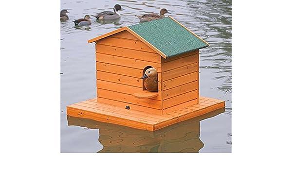 FINCA CASAREJO Caseta para Patos - Nido (Isla Flotante) + caseta para Patos (Grande): Amazon.es: Jardín