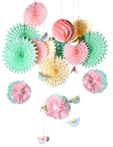 PAPER JAZZ Easter Party Home Baby Shower Birthday Spring Party Decoration Photo pros Booth Back Drop kit with Paper Fan Pompom Flower Honeycomb Ball Bird Peeps Hanging Decoration (Bird Fan) -