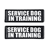 """SERVICE DOG IN TRAINING Patch with Hook Back and Reflective Lettering for Service Dog In Training Vests (Service Dog In Training, Large - 2"""" x 6"""")"""