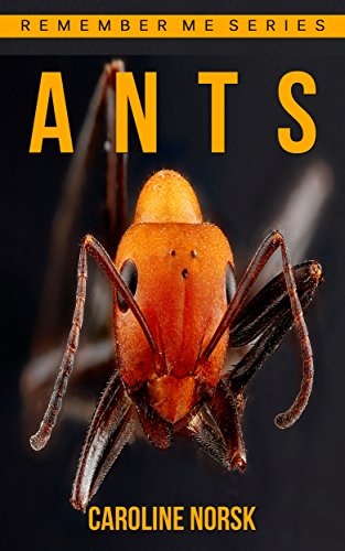 Ants: Amazing Photos & Fun Facts Book About Ants For Kids (Remember Me Series)