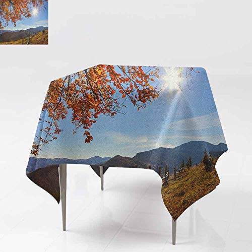 AndyTours Spill-Proof Table Cover,Fall,Fallen Leaves Over The Mountains Idyllic Fall Day Morning Sunrise Oak Tree Branches,Party Decorations Table Cover Cloth,70x70 Inch ()