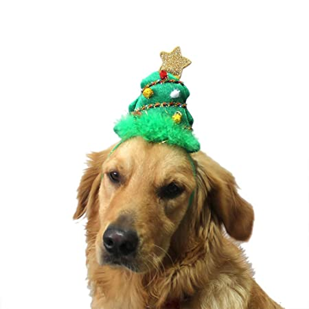 Gorras del festival de cumpleaños Tocado perro árbol de ...
