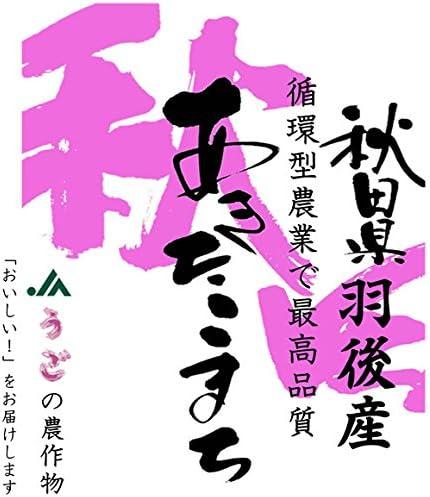 【玄米】秋田県羽後産 循環型農業 玄米 JAうご 「特A」連続受賞米 あきたこまち 5kgx1袋 令和元年産