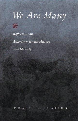 (We Are Many: Reflections on American Jewish History and Identity (Modern Jewish History))