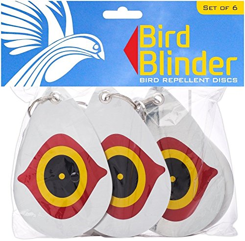 Kingfisher Solar Lights 100