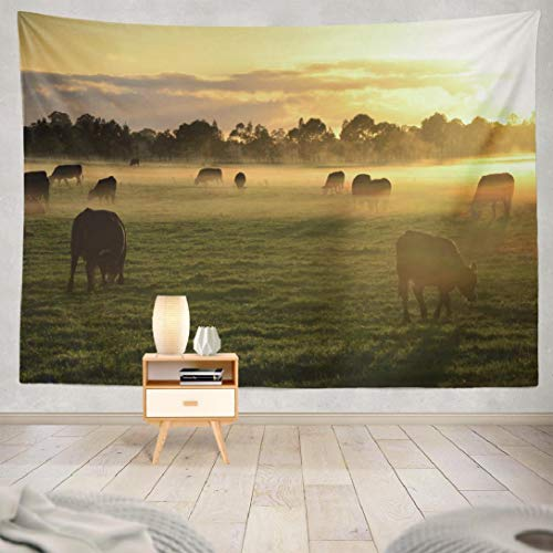 Wbluck Landscape Tapestry, Wall Hanging Tapestry, Rural Landscape with Morning Fog Sunrise Psychedelic Tapestry Wall Decor for Room Decoration 60 L x 80 W, Rural Landscape (Furniture Outdoor Nsw)