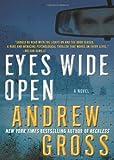 Eyes Wide Open, Andrew Gross, 0061655961