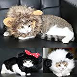 Rhumen Pet Costume Lion Mane Wig for Cat or Small Dog Halloween Christmas Clothe Fancy Dress up (Brown)