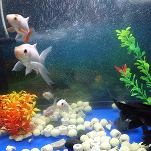 TELLW Fish Nano Far-Infrared Bacterias Casa Acuario Filtro Material Cultura Anillo Cerámica Bio-Sphere Acuario Bacterias Cilíndrico: Amazon.es: Hogar