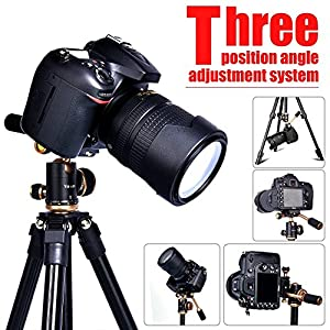 Lightweight DSLR Projector Stand,Professional Portable Camera Tripod with 1/4 Inch Screw,360°Panorama Ball Head and Quick Release Plate For Canon Nikon Olympus Devices DV camcorders and Projector