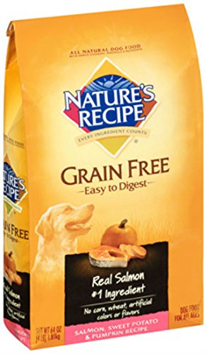 Amazon natures recipe grain free salmon recipe dry dog food natures recipe grain free salmon recipe dry dog food 4 pound forumfinder Image collections