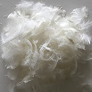 Amazon Com Bulk Goose Down Pillow Feathers 1 4lb Diy Make