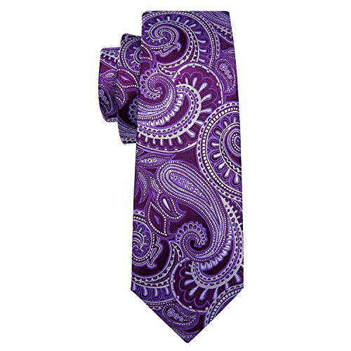 Barry.Wang Men Ties Paisley Woven Silk Necktie Set with Pocket Suqare Cufflinks Formal