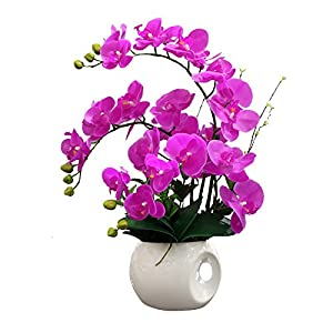 TAC Nearly Natural Phalaenopsis Silk Orchid Flower Arrangement Artificial Flower Plants Home Wedding Decor Butterfly Orchid - Hot Pink 102