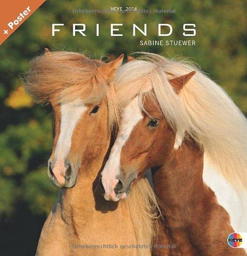 Friends - Pferde 2014. Broschurkalender