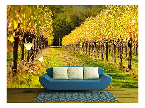 wall26 - Beautiful Vineyard in Fall - Removable Wall Mural | Self-Adhesive Large Wallpaper - 100x144 inches