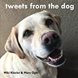 tweets from the dog