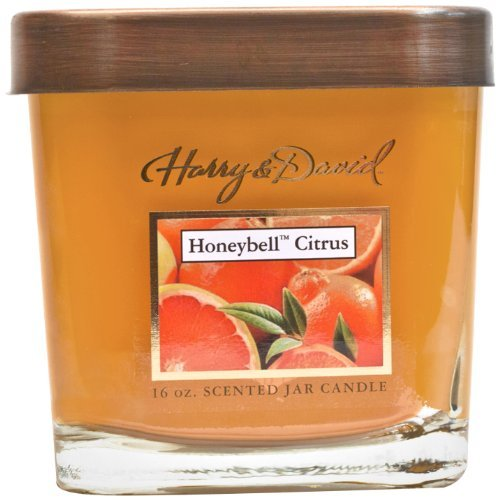 Harry and David 16-Ounce Jar Candle, Large, Honeybell Citrus by MVP Group International