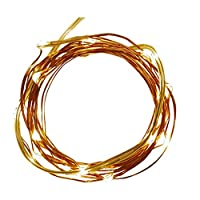 Product Works Tiny Lites Battery Operated Copper Wire LED Light String, Warm White, 6.5-Feet