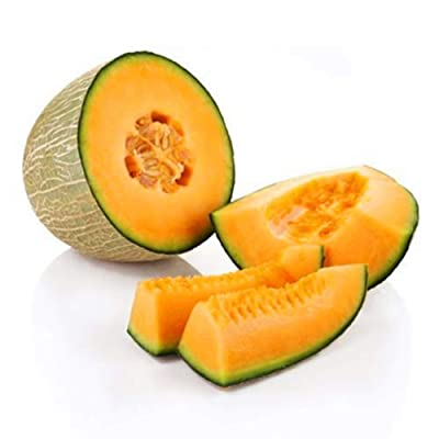JingYu 50Pcs Cantaloupe Seeds, Sweet Delicious Fruit Seeds Suitable for Planting Garden Yard Farm Cantaloupe Seeds : Garden & Outdoor