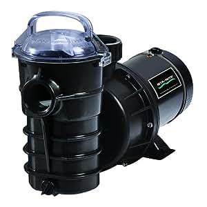 Pentair DYNII-NI-1-1/2 HP Dynamo Single Speed Aboveground Pool Pump with Cord, 1-1/2 HP
