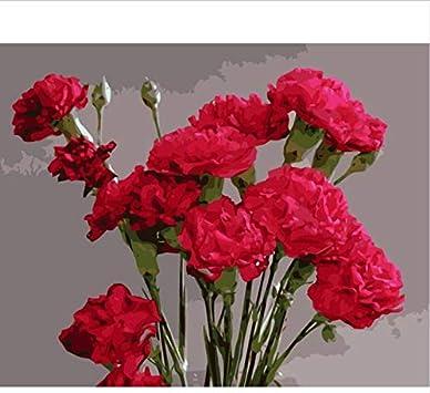 Pintura de números DIY Claveles Rojos Flores Mano Imagen de acrílico Regalo para Madre Adulto 40X50Cm Sin Marco