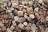 """Fantasia Materials: 11 lbs Tumbled Moonstone """"A"""" Grade Stones from India - Bulk Natural Polished Gemstone Supplies for Crafts, Reiki, Wicca and Energy Crystal Healing *Wholesale Lot*"""