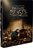 Fantastic Beasts and Where to Find Them (Limited Edition Steelbook Blu-ray + DVD + Digital Copy) Audio & Subtitles: English, Spanish, and Portuguese + Only French Subtitles - IMPORT
