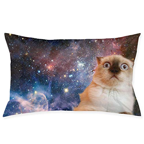 ow Case, Cute Space Cat Art Pillowcase, Rectangle Zippered Pillow Cases - Pillow Protector Cover Case - Standard Size 20
