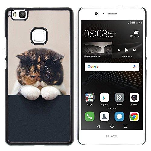 STPlus Gato en una caja Animal Carcasa Funda Rigida Para Huawei P9 Lite #2