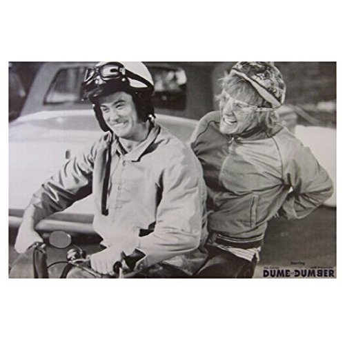 Twenty-three 24X36 Inch canvas poster 2014 New Dumb And Dumber Home Decoration Movie Poster Custom Fashion Classic -