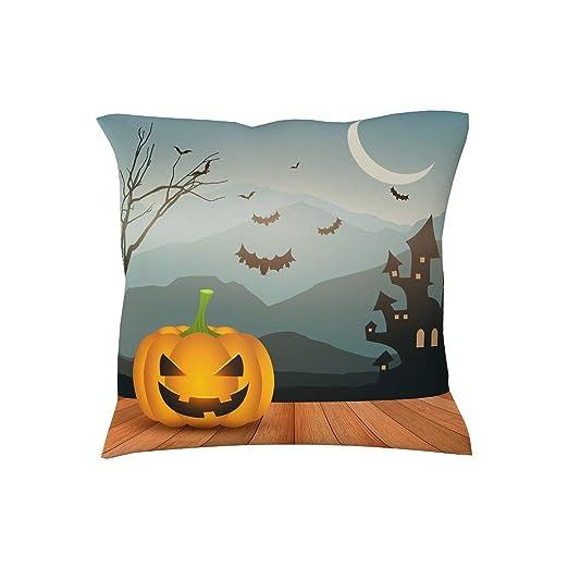 RQPPY Frohes - Funda de cojín para Halloween, diseño de Hada ...