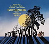 Into the Woods Cast Recording Edition by Original Broadway Cast Recording (2011) Audio CD
